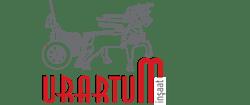 Urartum Yapı